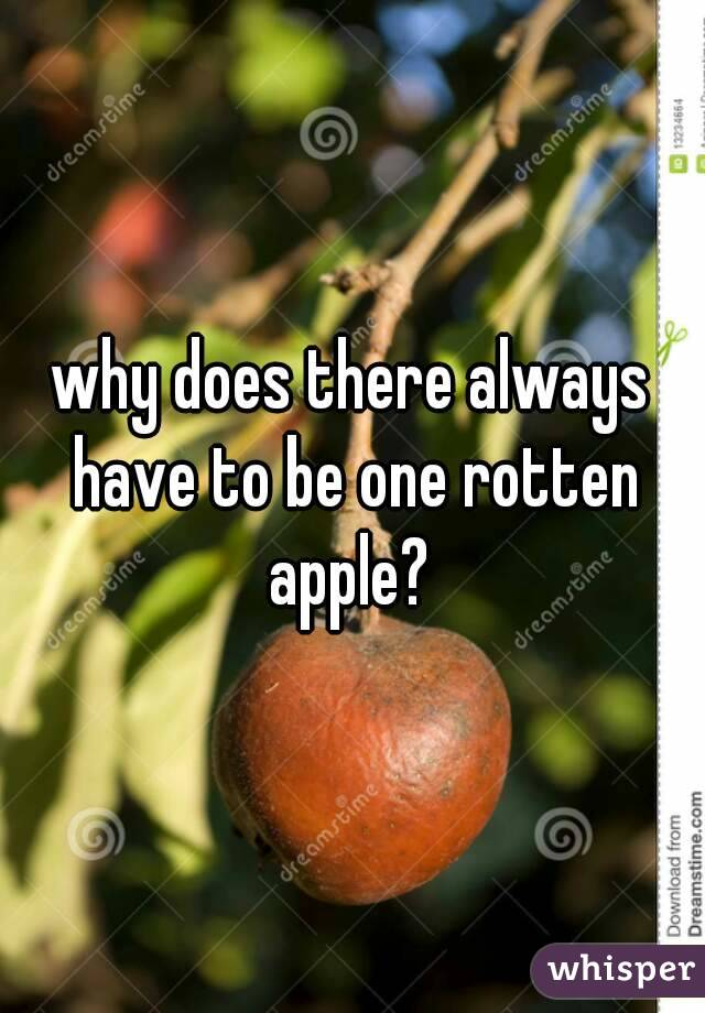 why does there always have to be one rotten apple?