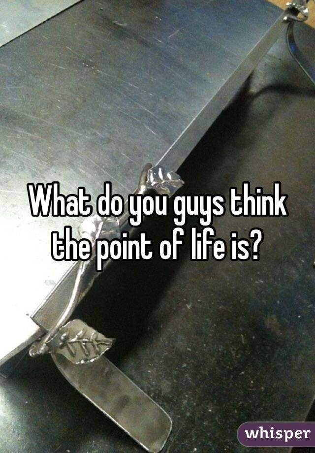 What do you guys think the point of life is?