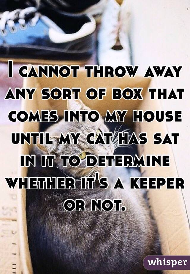 I cannot throw away any sort of box that comes into my house until my cat has sat in it to determine whether it's a keeper or not.