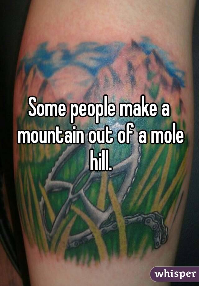 Some people make a mountain out of a mole hill.