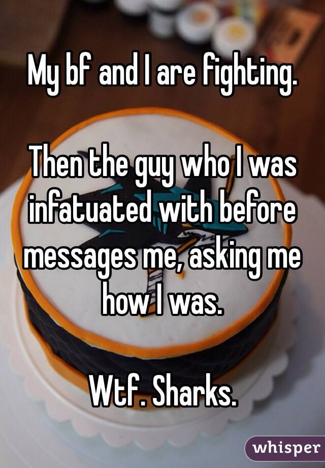 My bf and I are fighting.  Then the guy who I was infatuated with before messages me, asking me how I was.  Wtf. Sharks.