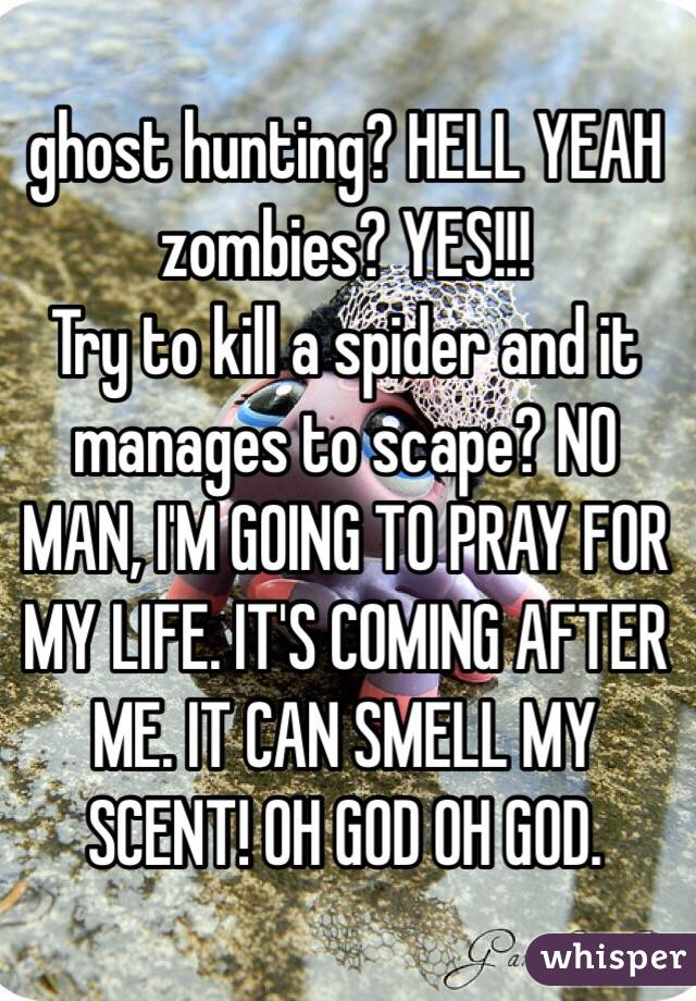 ghost hunting? HELL YEAH zombies? YES!!!  Try to kill a spider and it manages to scape? NO MAN, I'M GOING TO PRAY FOR MY LIFE. IT'S COMING AFTER ME. IT CAN SMELL MY SCENT! OH GOD OH GOD.