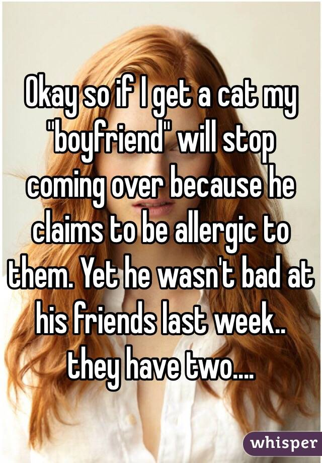 """Okay so if I get a cat my """"boyfriend"""" will stop coming over because he claims to be allergic to them. Yet he wasn't bad at his friends last week.. they have two...."""