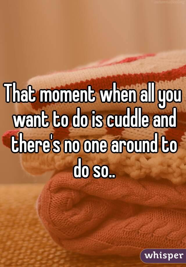 That moment when all you want to do is cuddle and there's no one around to do so..