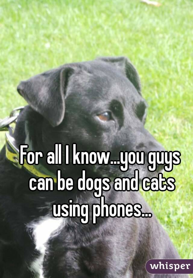 For all I know...you guys can be dogs and cats using phones...