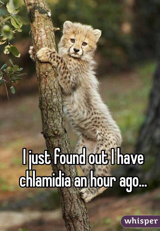 I just found out I have chlamidia an hour ago...