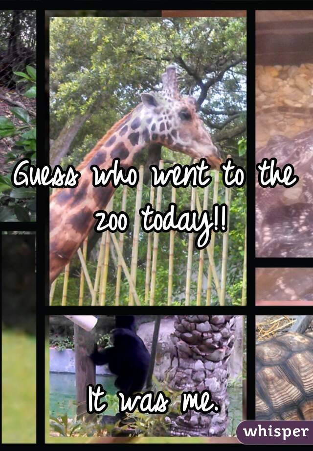 Guess who went to the zoo today!!    It was me.