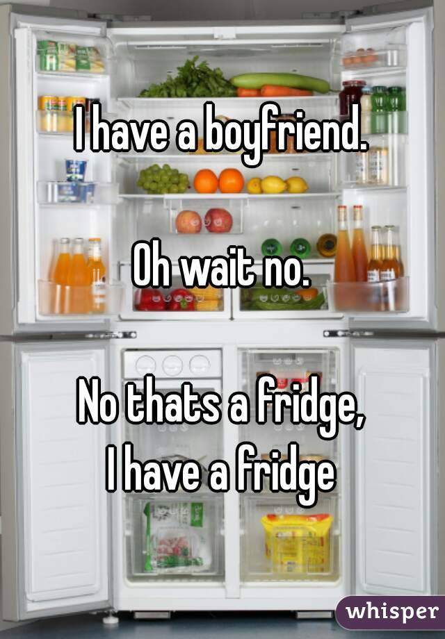 I have a boyfriend.  Oh wait no.  No thats a fridge, I have a fridge