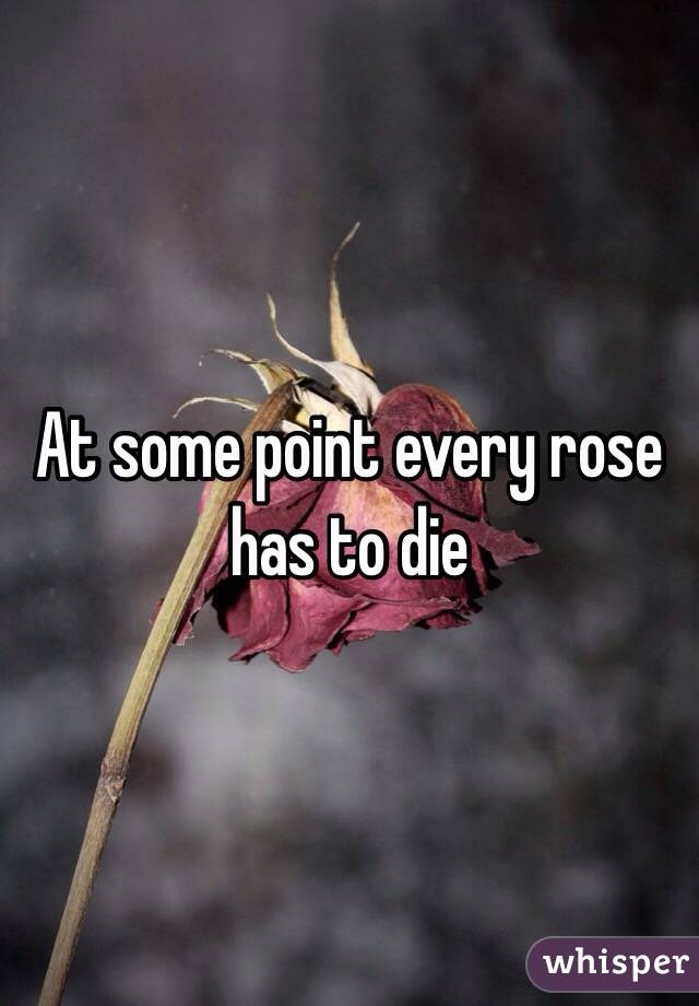 At some point every rose has to die