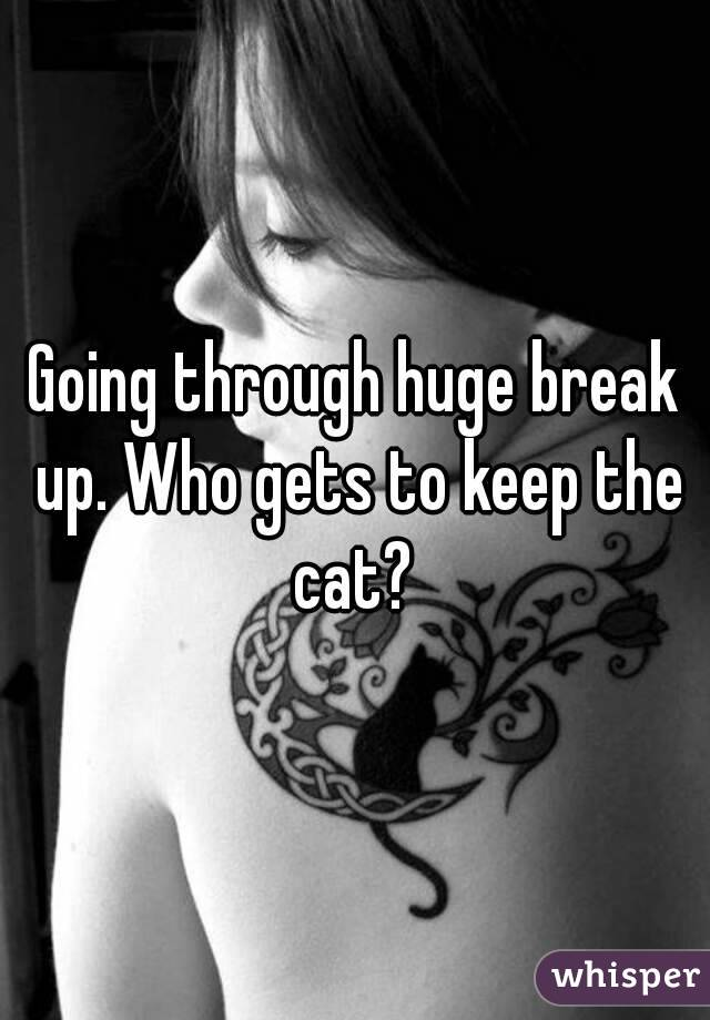 Going through huge break up. Who gets to keep the cat?