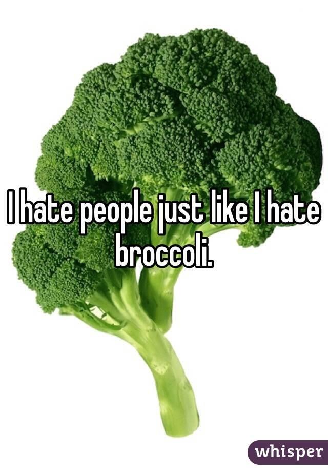I hate people just like I hate broccoli.