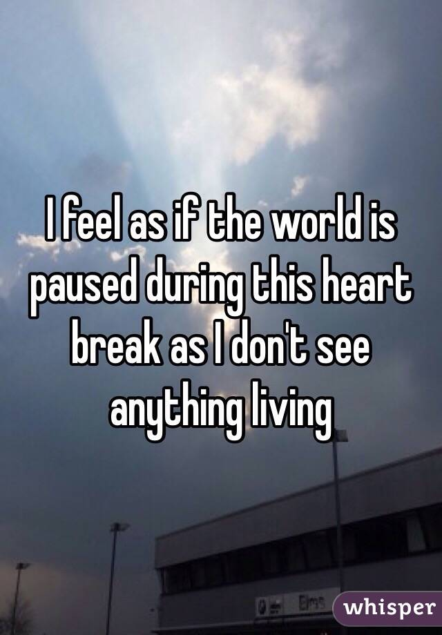 I feel as if the world is paused during this heart break as I don't see anything living