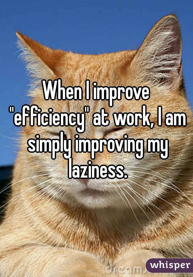 """When I improve """"efficiency"""" at work, I am simply improving my laziness."""