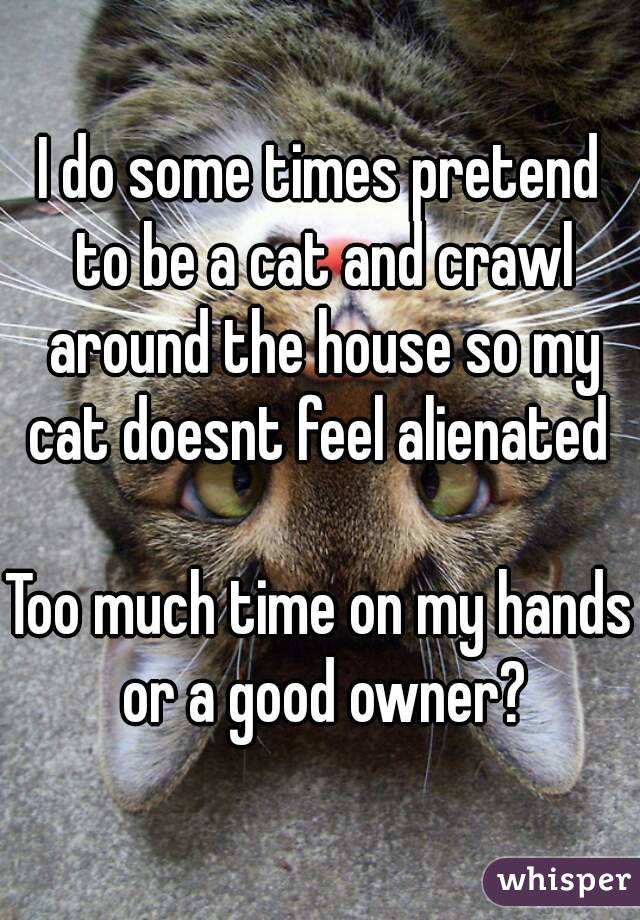 I do some times pretend to be a cat and crawl around the house so my cat doesnt feel alienated   Too much time on my hands or a good owner?