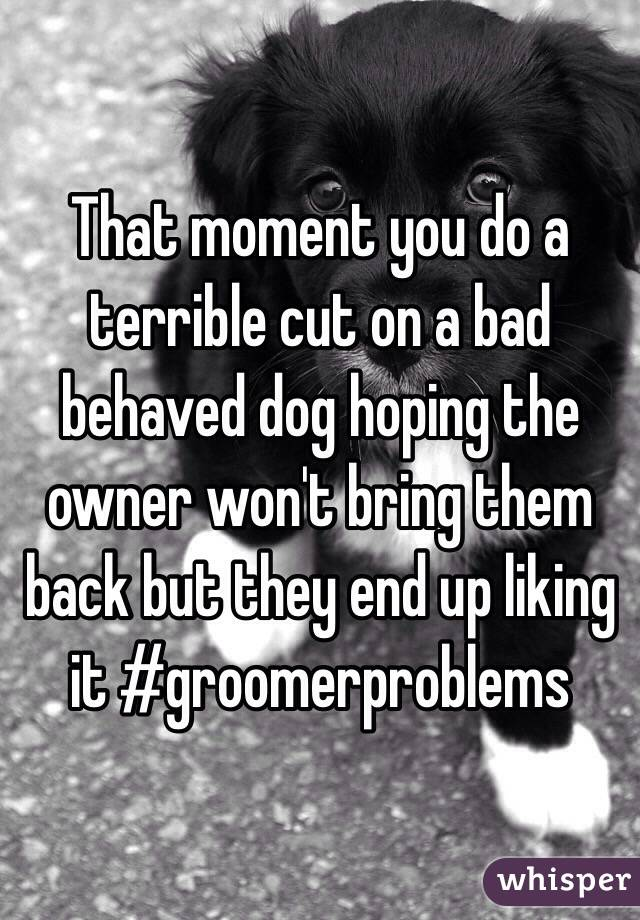 That moment you do a terrible cut on a bad behaved dog hoping the owner won't bring them back but they end up liking it #groomerproblems