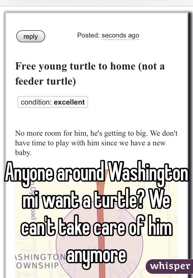 Anyone around Washington mi want a turtle? We can't take care of him anymore