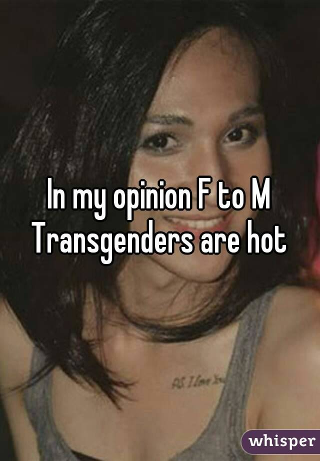 In my opinion F to M Transgenders are hot