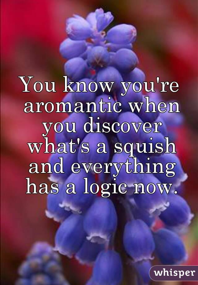 You know you're aromantic when you discover what's a squish and everything has a logic now.