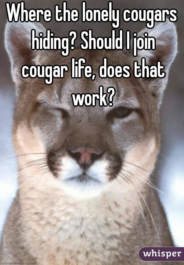 Where the lonely cougars hiding? Should I join cougar life, does that work?