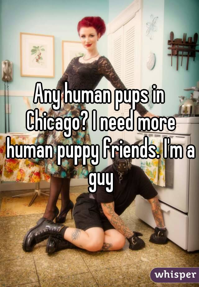 Any human pups in Chicago? I need more human puppy friends. I'm a guy