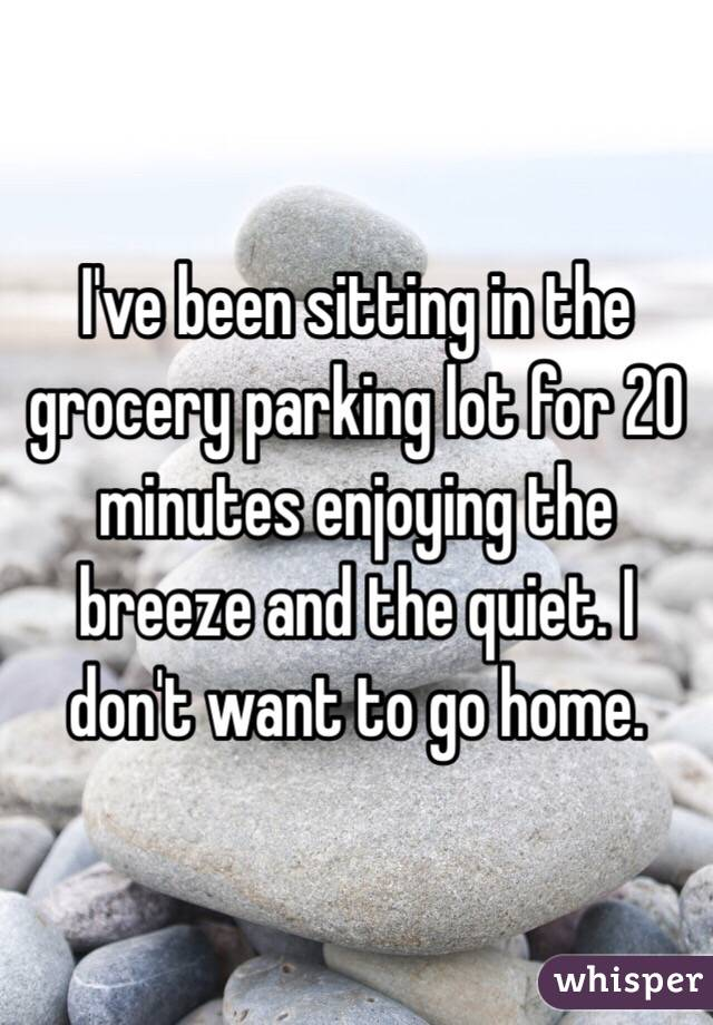 I've been sitting in the grocery parking lot for 20 minutes enjoying the breeze and the quiet. I don't want to go home.