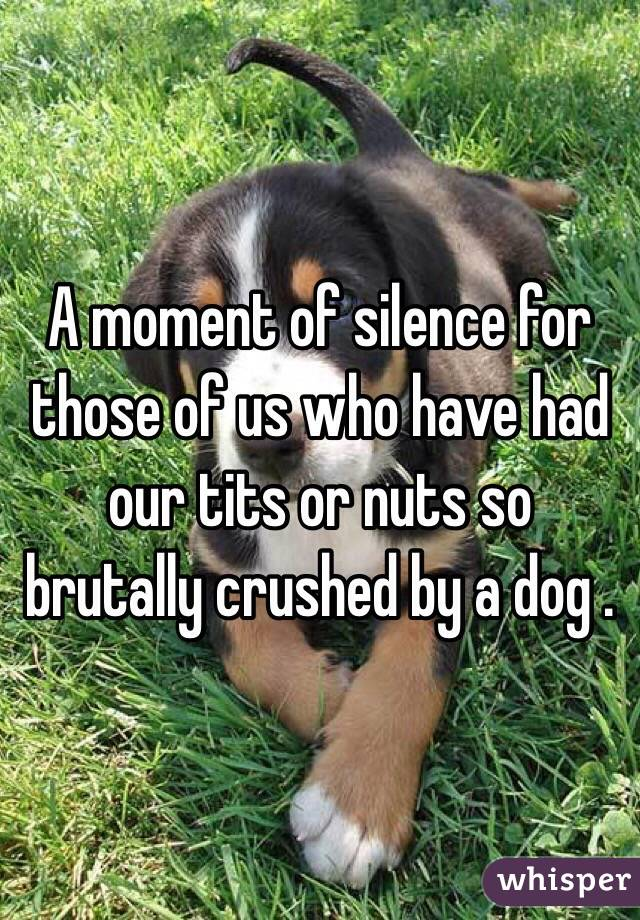 A moment of silence for those of us who have had our tits or nuts so brutally crushed by a dog .