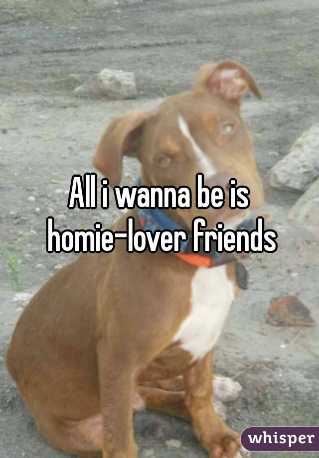 All i wanna be is homie-lover friends