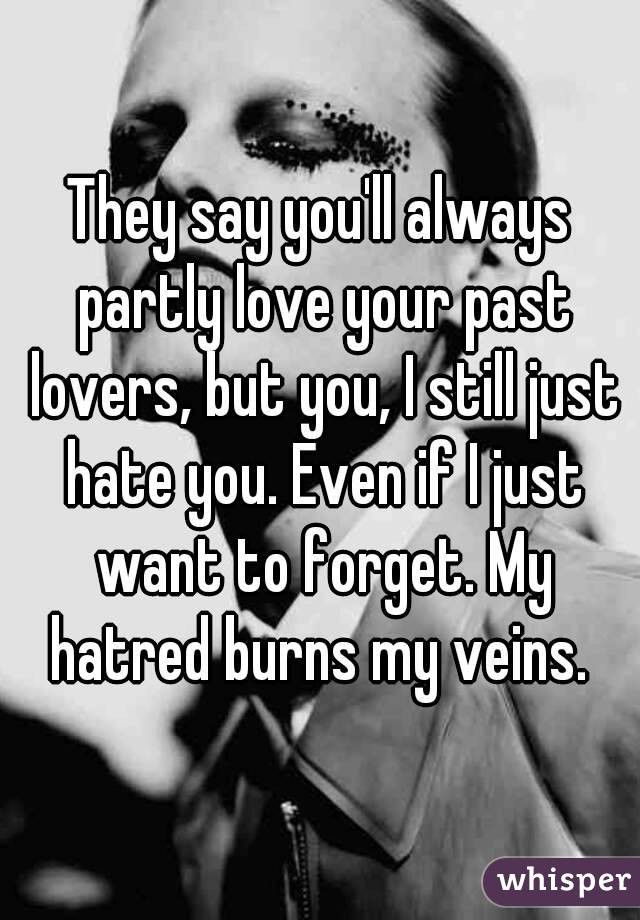 They say you'll always partly love your past lovers, but you, I still just hate you. Even if I just want to forget. My hatred burns my veins.