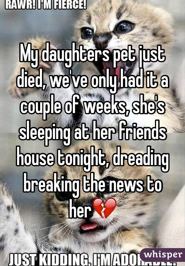 My daughters pet just died, we've only had it a couple of weeks, she's sleeping at her friends house tonight, dreading breaking the news to her💔