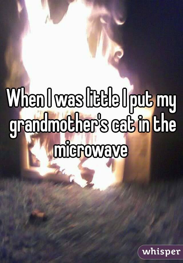 When I was little I put my grandmother's cat in the microwave