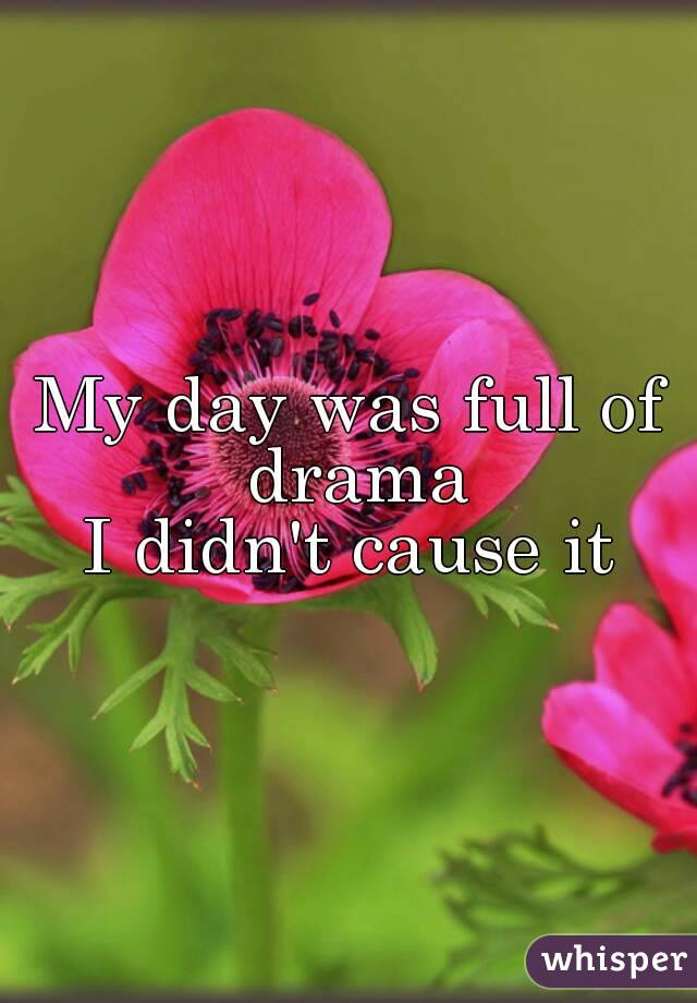 My day was full of drama I didn't cause it
