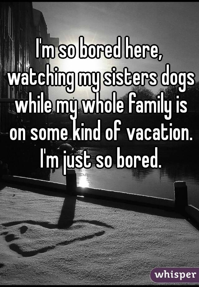 I'm so bored here, watching my sisters dogs while my whole family is on some kind of vacation. I'm just so bored.