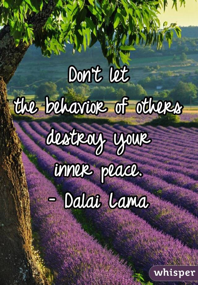 Don't let  the behavior of others  destroy your  inner peace. - Dalai Lama