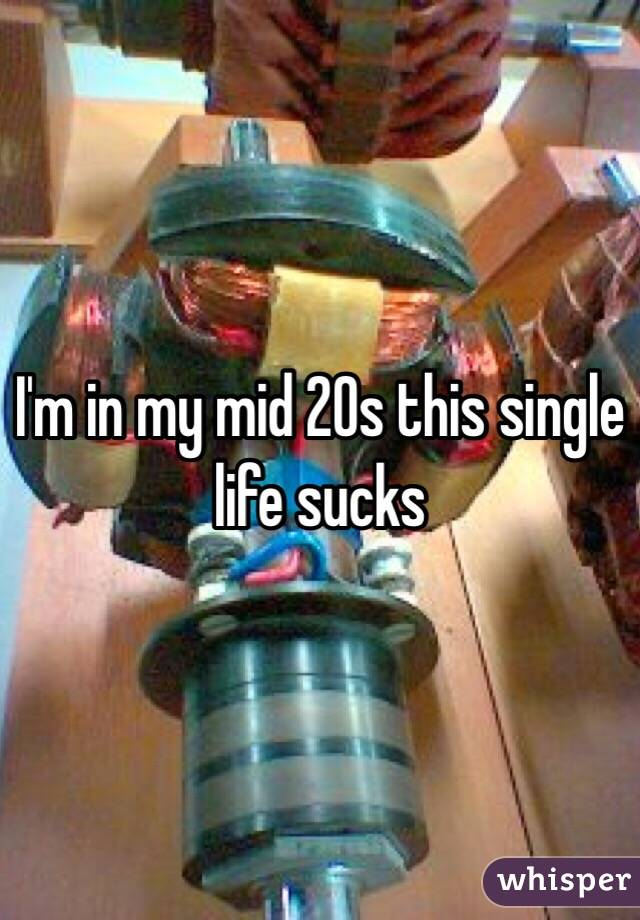 I'm in my mid 20s this single life sucks