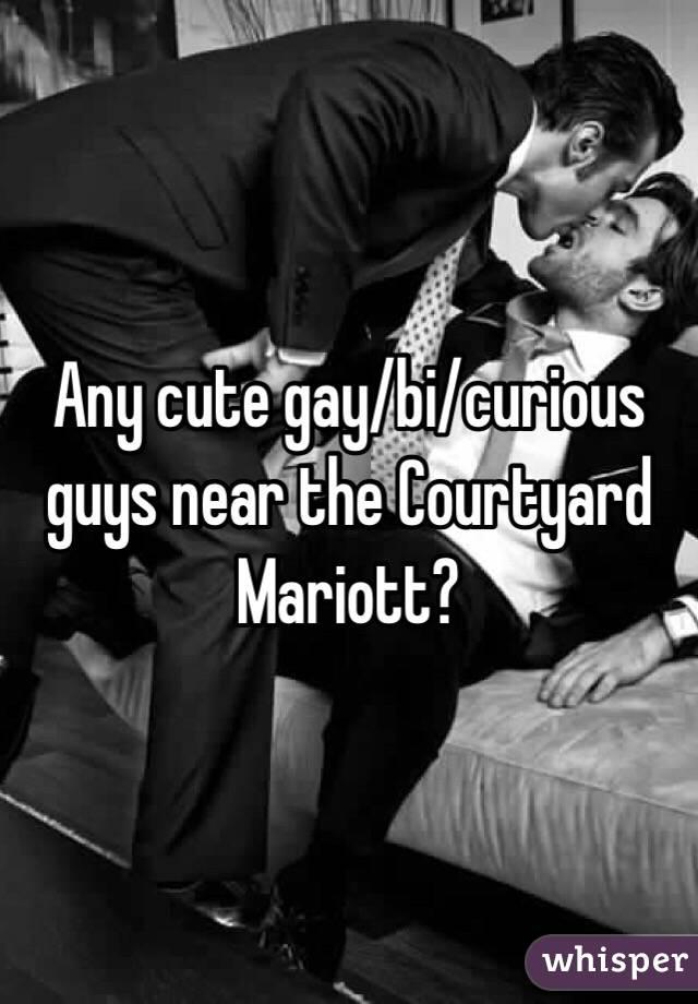 Any cute gay/bi/curious guys near the Courtyard Mariott?