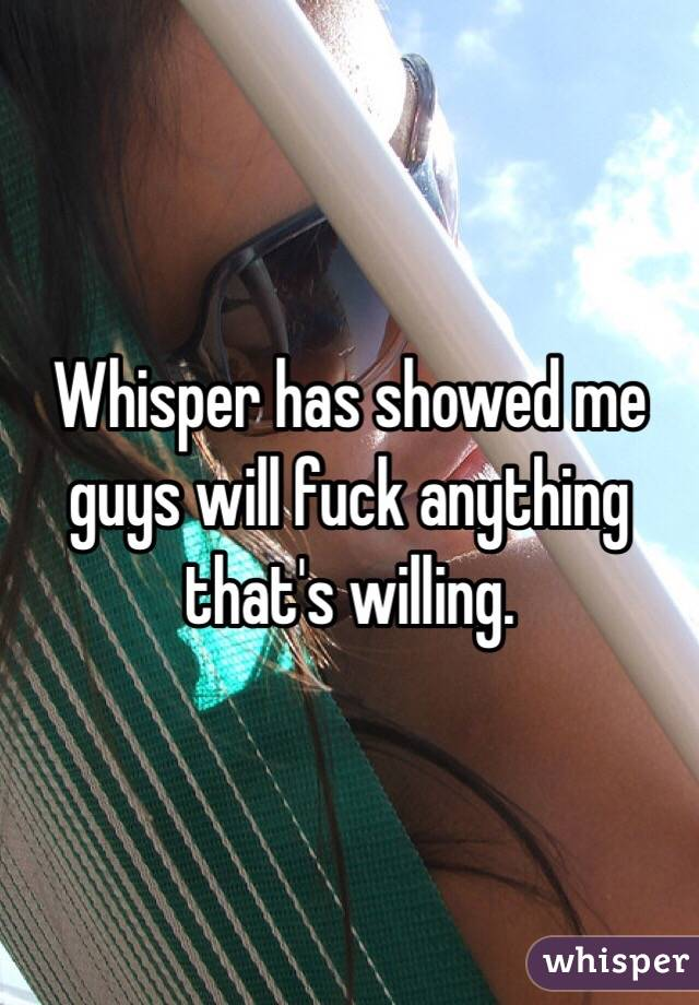 Whisper has showed me guys will fuck anything that's willing.