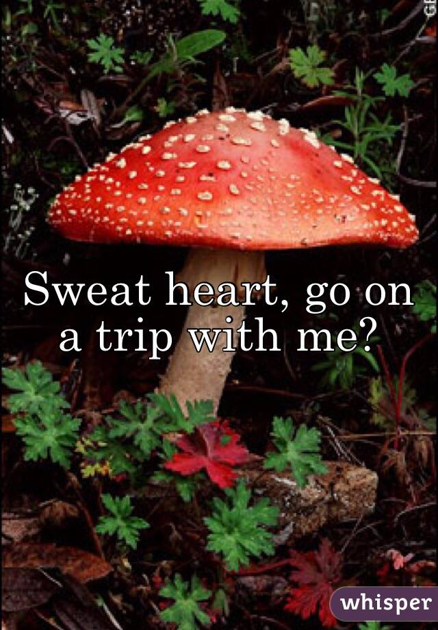 Sweat heart, go on a trip with me?