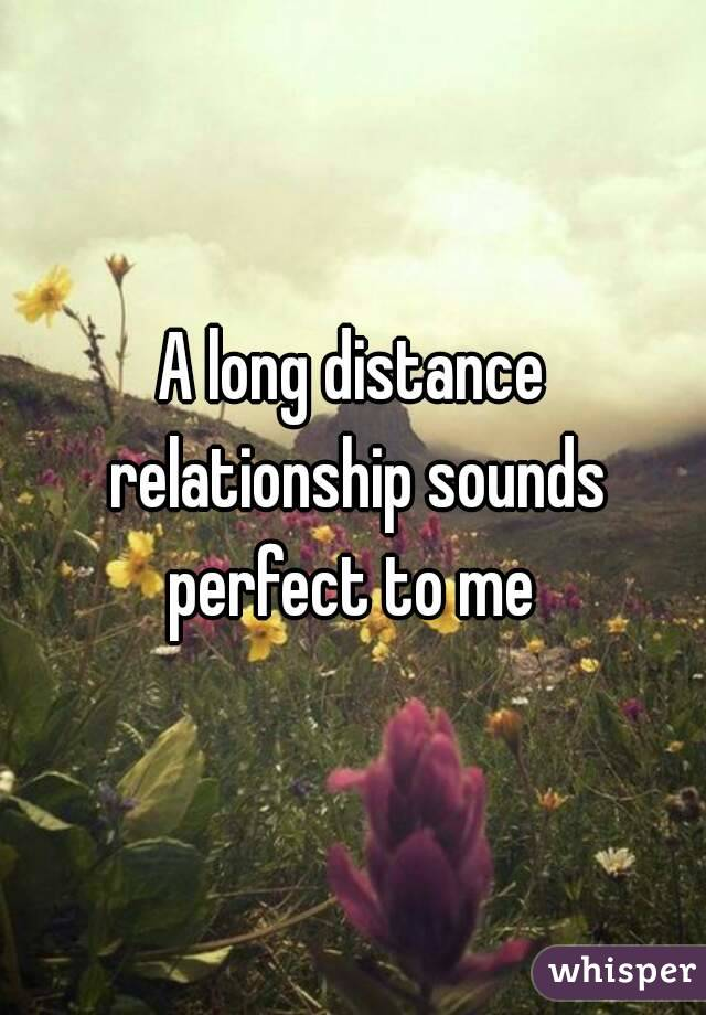 A long distance relationship sounds perfect to me