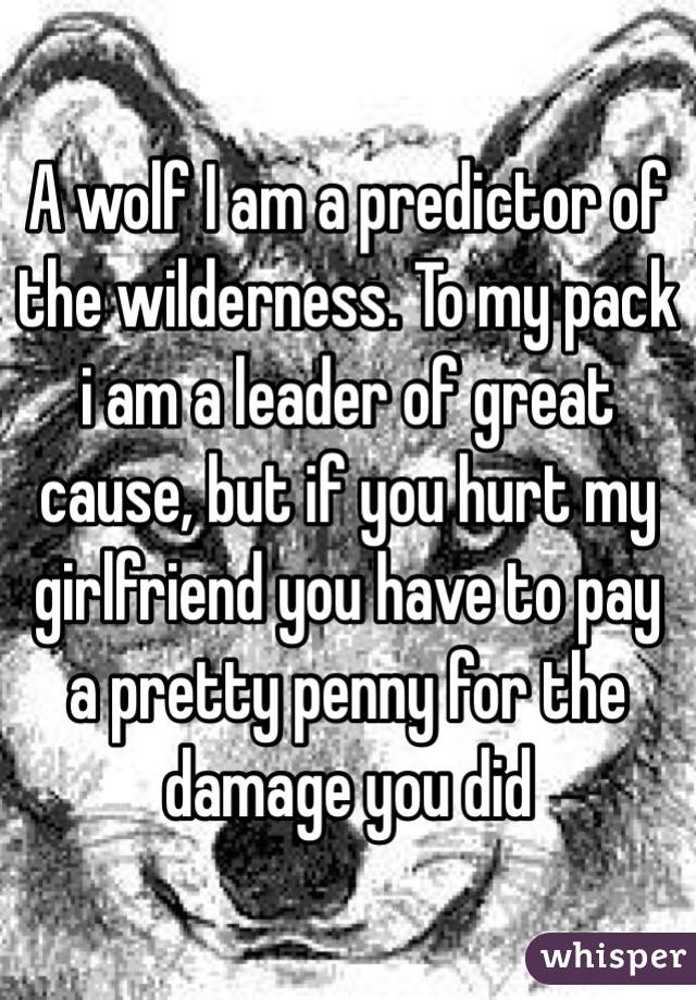 A wolf I am a predictor of the wilderness. To my pack i am a leader of great cause, but if you hurt my girlfriend you have to pay a pretty penny for the damage you did