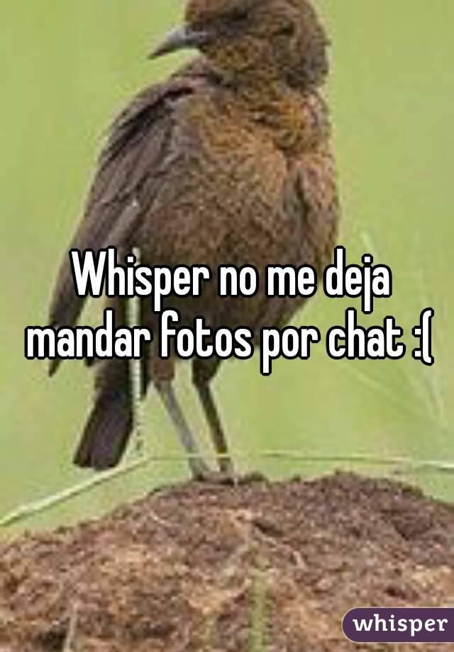 Whisper no me deja mandar fotos por chat :(