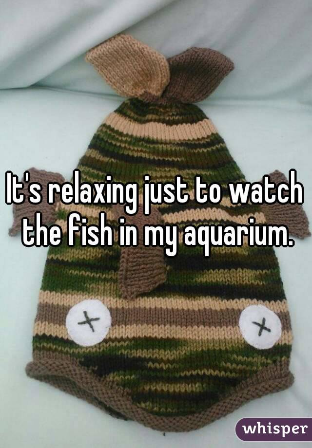 It's relaxing just to watch the fish in my aquarium.