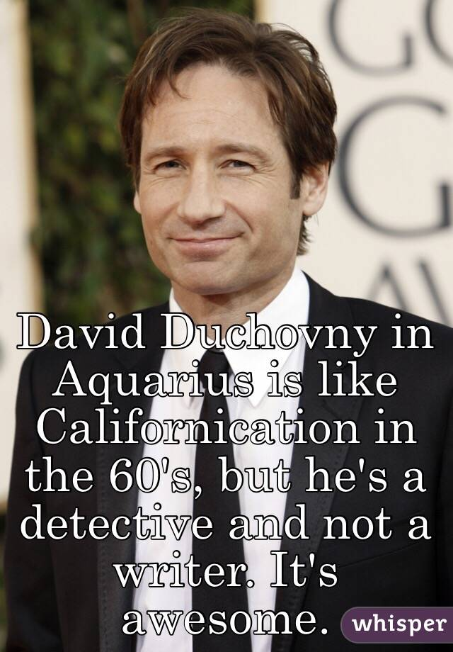 David Duchovny in Aquarius is like Californication in the 60's, but he's a detective and not a writer. It's awesome.