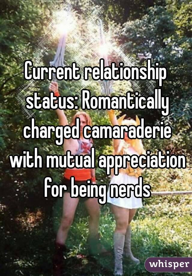Current relationship status: Romantically charged camaraderie with mutual appreciation for being nerds