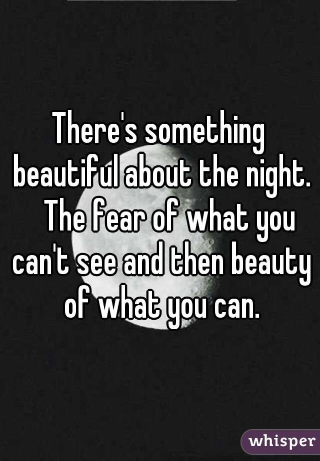 There's something beautiful about the night. The fear of what you can't see and then beauty of what you can.