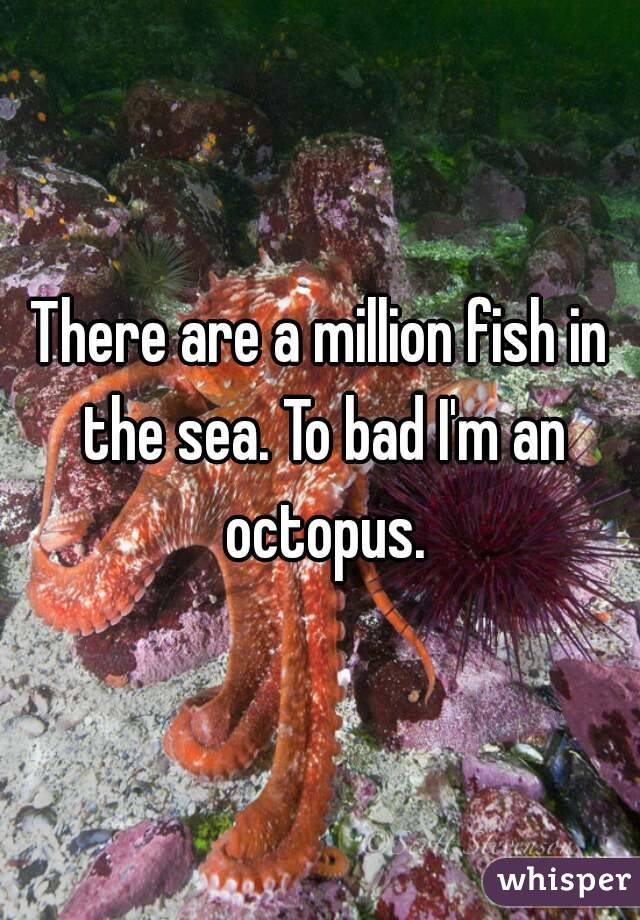 There are a million fish in the sea. To bad I'm an octopus.