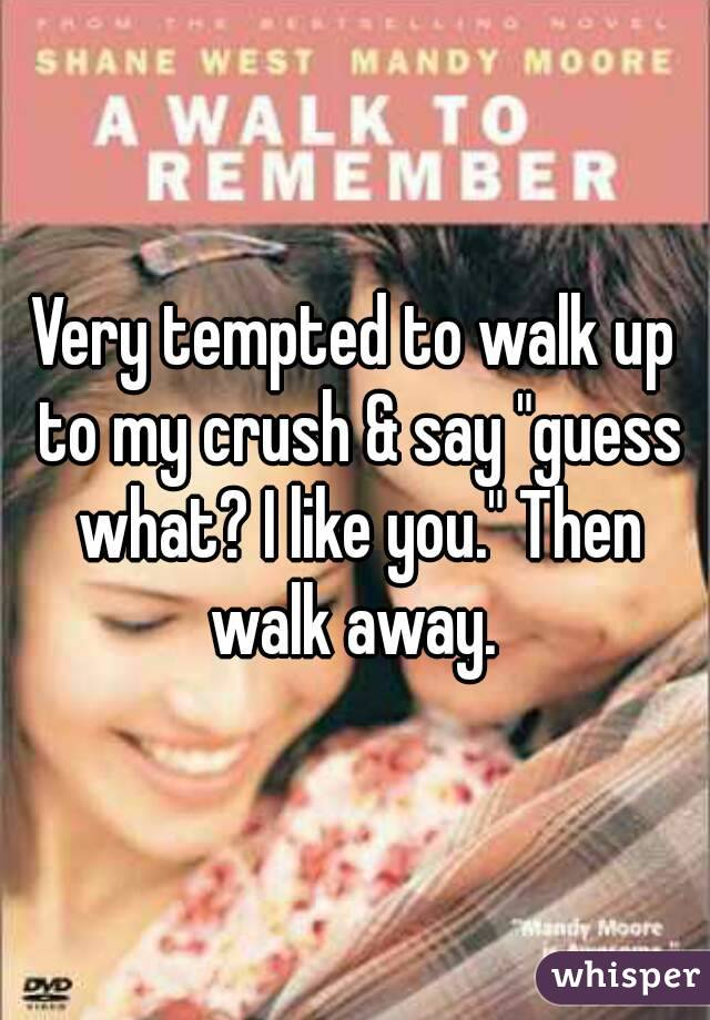 """Very tempted to walk up to my crush & say """"guess what? I like you."""" Then walk away."""