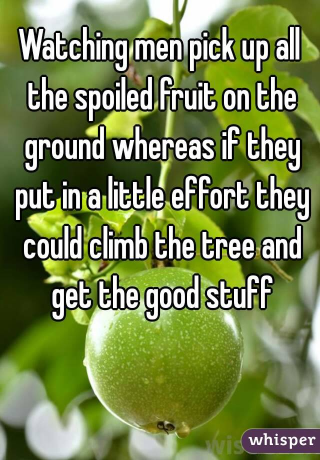 Watching men pick up all the spoiled fruit on the ground whereas if they put in a little effort they could climb the tree and get the good stuff