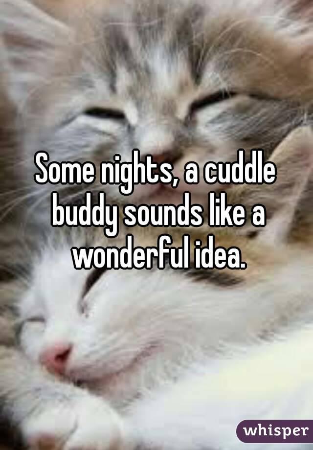 Some nights, a cuddle buddy sounds like a wonderful idea.