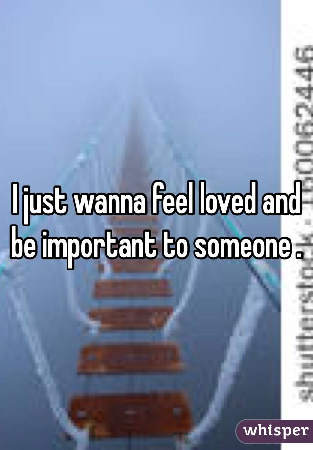 I just wanna feel loved and be important to someone .