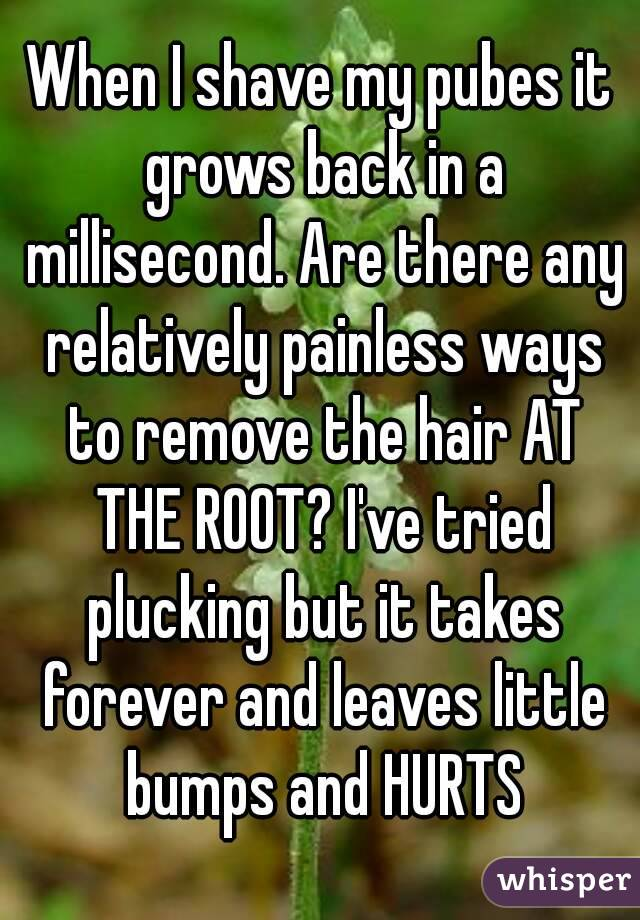 When I shave my pubes it grows back in a millisecond. Are there any relatively painless ways to remove the hair AT THE ROOT? I've tried plucking but it takes forever and leaves little bumps and HURTS